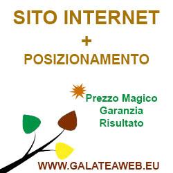 Sito Internet + Posizionamento (Prezzo Speciale)